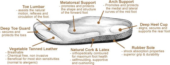 Anatomy of an orthopedic shoes.