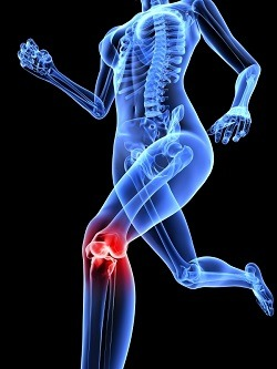 Seven Of The Most Common Knee Injuries AchillesHealth